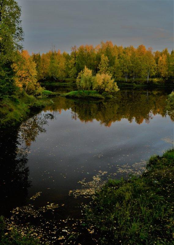 Тишина.. - Лариса Красноперова