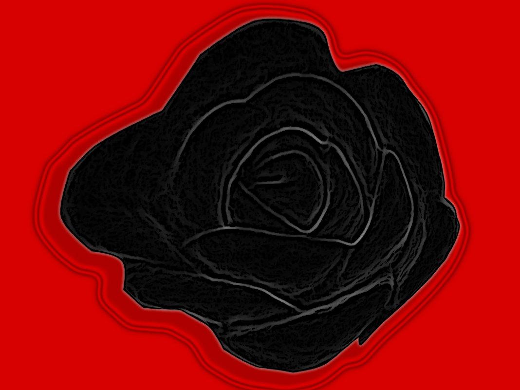 черная роза - Юлия Денискина