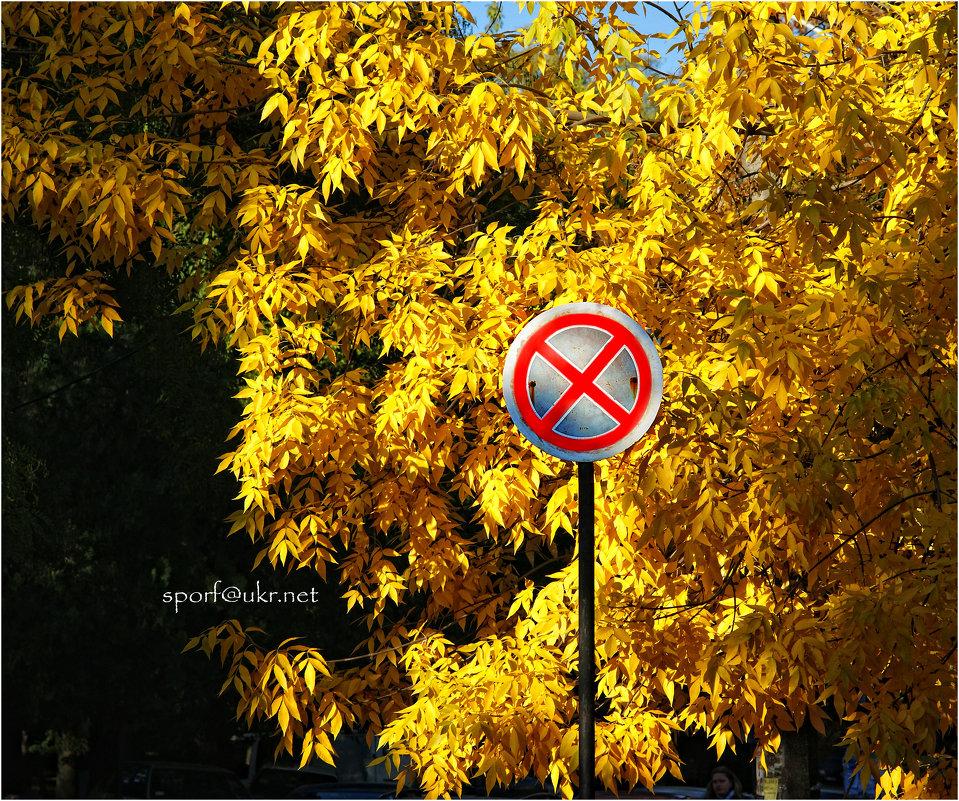 Осень уже не остановить... - Сергей Порфирьев