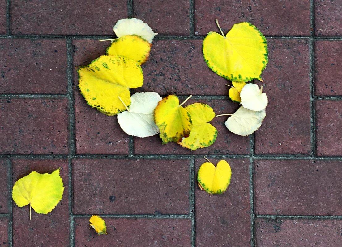 Листья желтые ... - Сергей Рубан