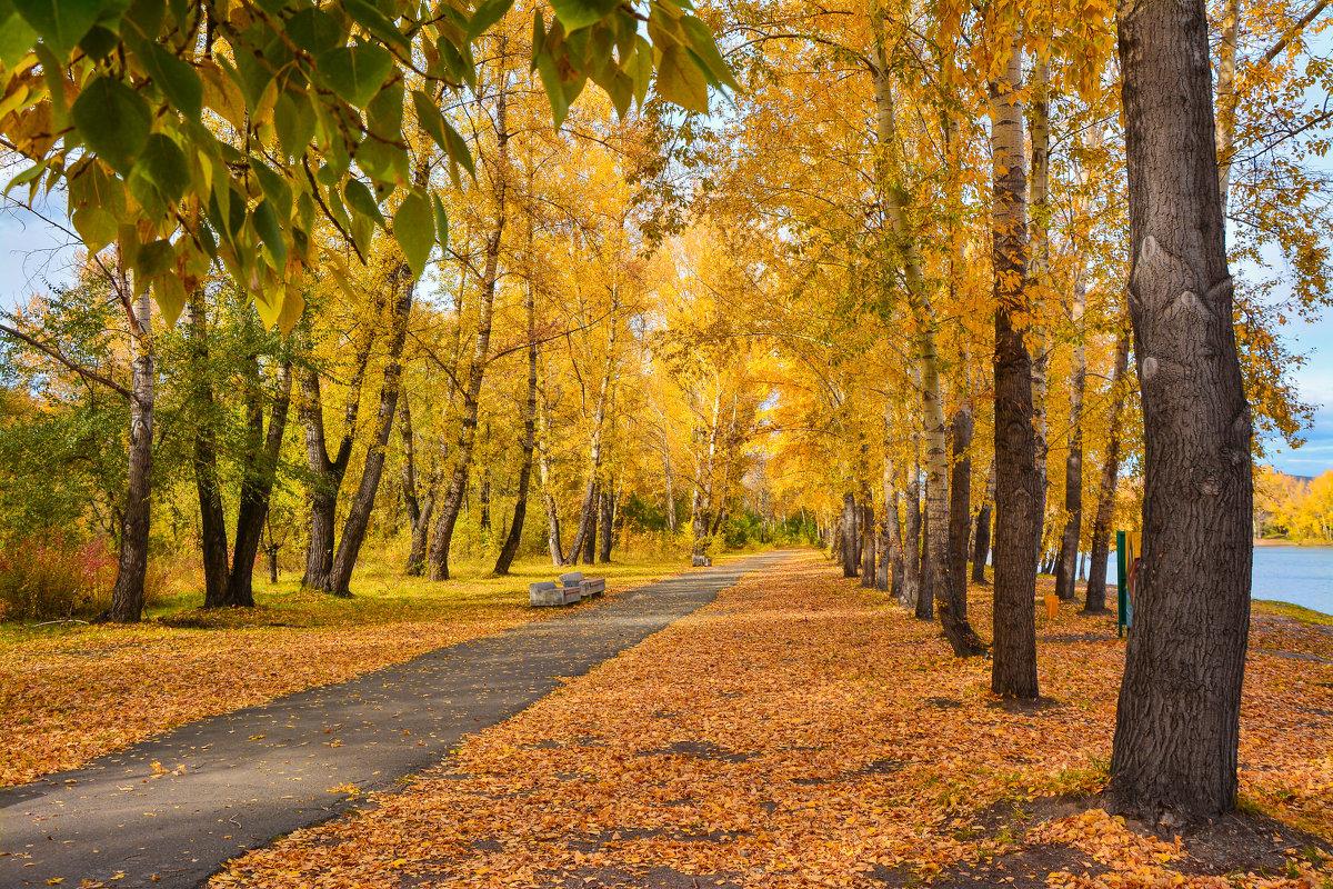Осень в разгаре. - юрий Амосов