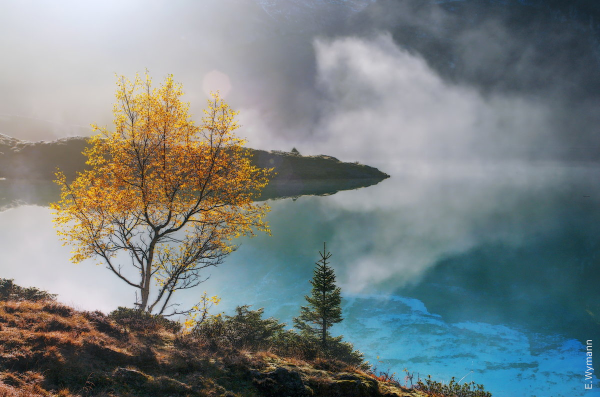 Осени волшебство - Elena Wymann