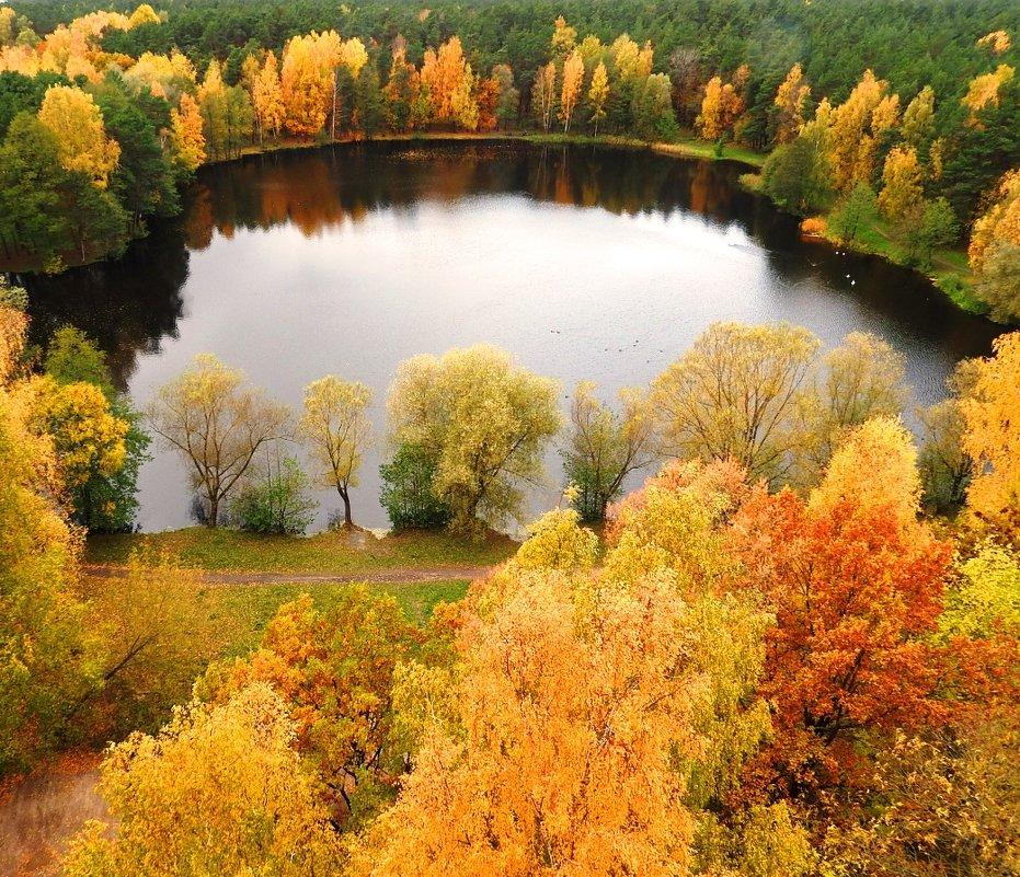 Лесное озеро - Александр Михайлов