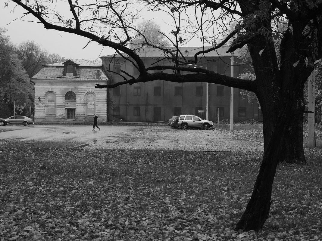 одинокий пешеход - sv.kaschuk