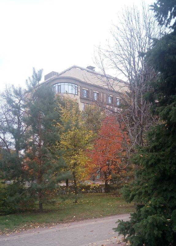 Осень - Serg
