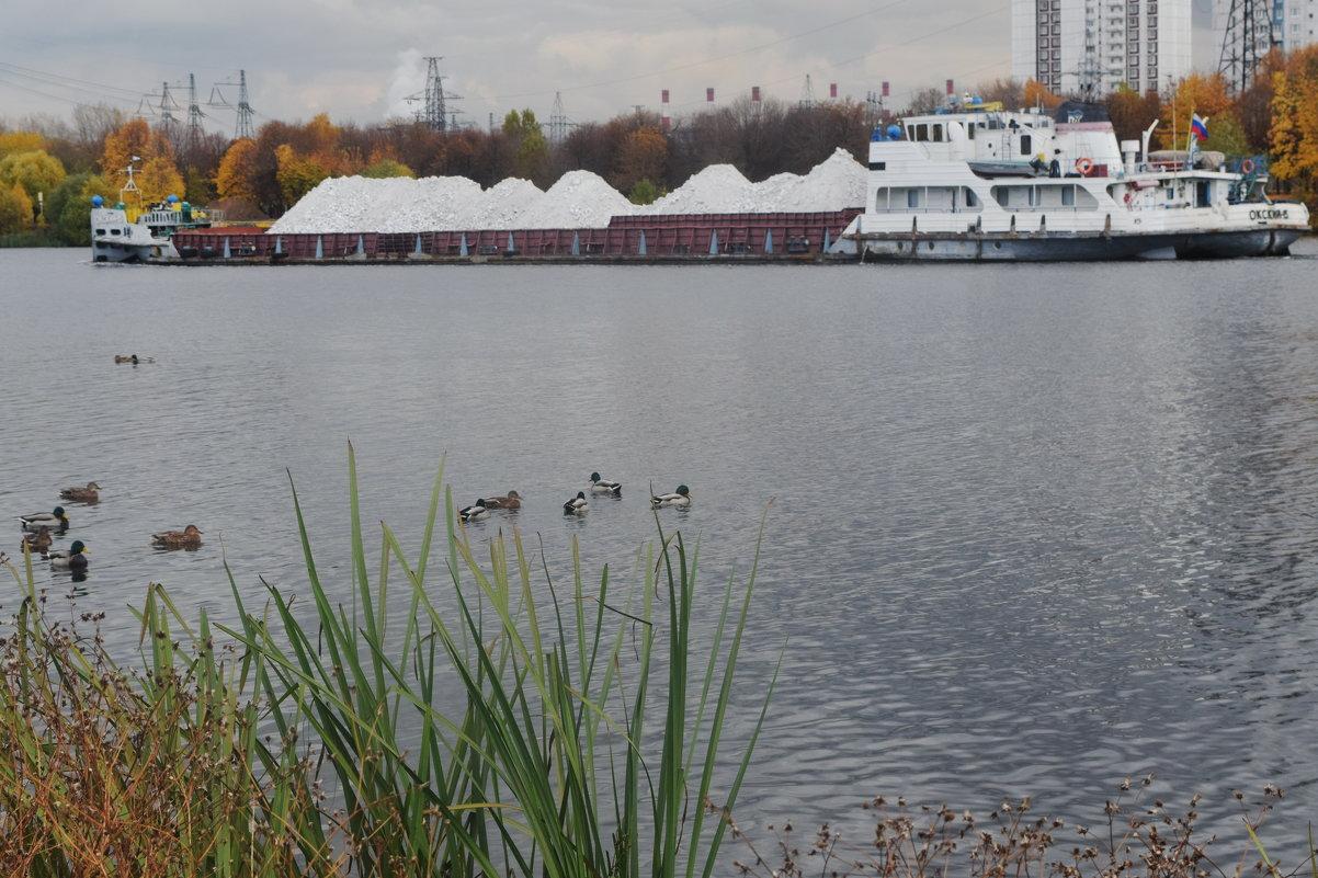 Москва река, баржи, утки, рыба. Через час соревнования по ловле рыбы. - Татьяна Помогалова