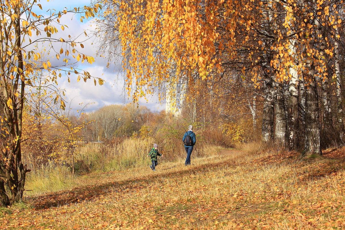 Прогулка в осени - Татьяна Ломтева