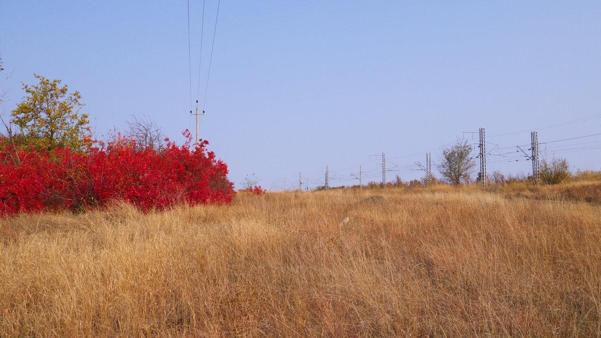 Осенние краски - Сергей Махонин
