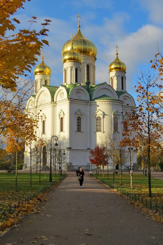 Екатерининский собор - Светлана Петошина