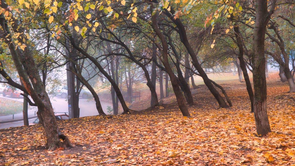 Осень в Ростове - Александр Гапоненко