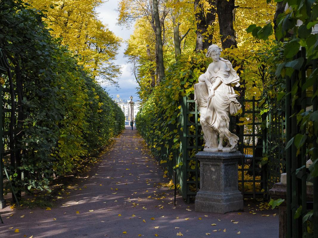 В Летний  сад пришла осень. - Олег Бабурин