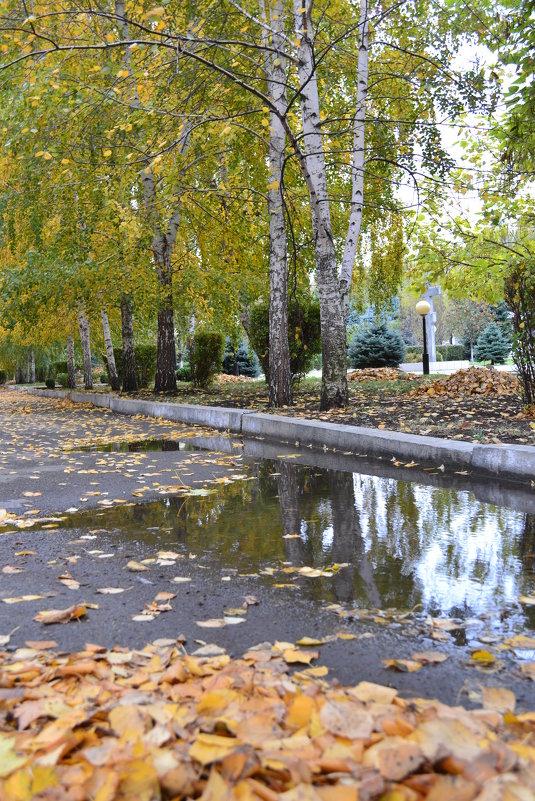 Осень - Анастасия Фомина