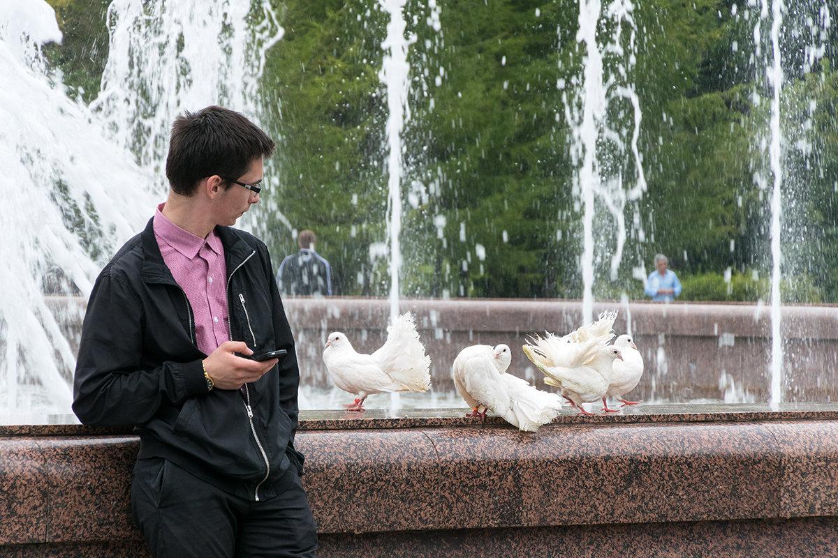 SMS и голуби - VL