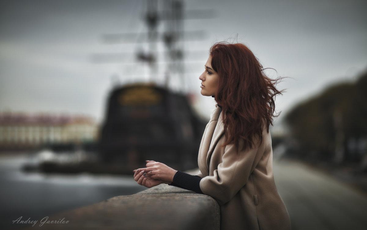 мечта - Андрей Гаврилов