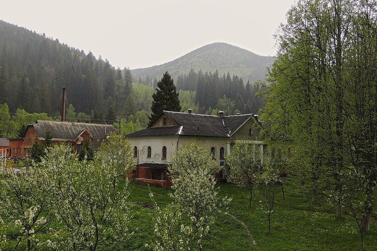В Караптах - Роман Савоцкий