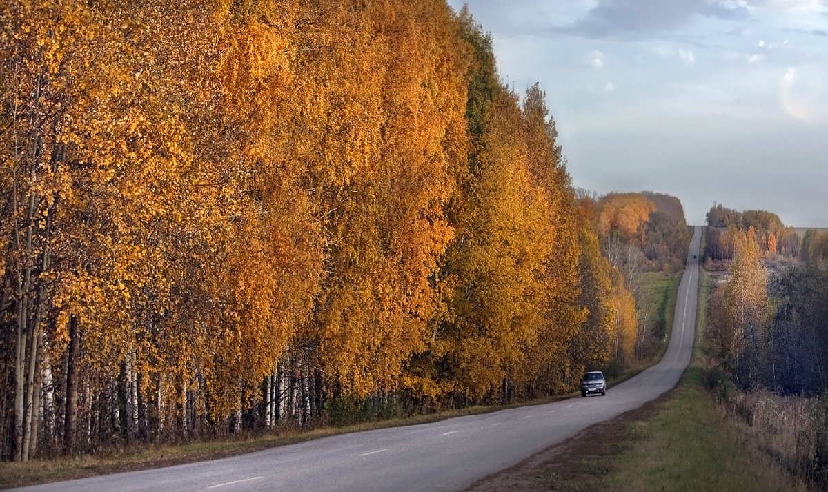 Возвращение - Olenka
