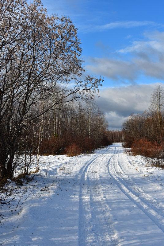 Ноябрьский день - Илья Магасумов