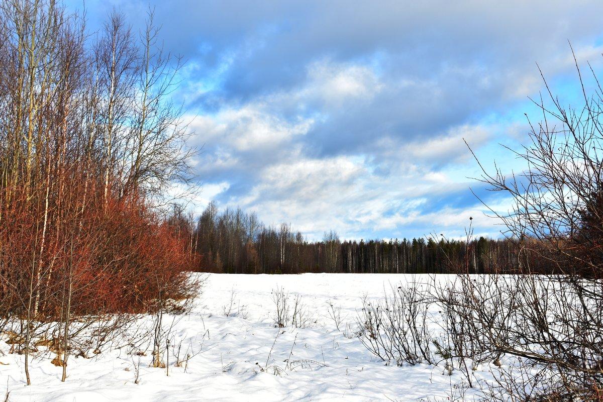 Первый снег! - Илья Магасумов