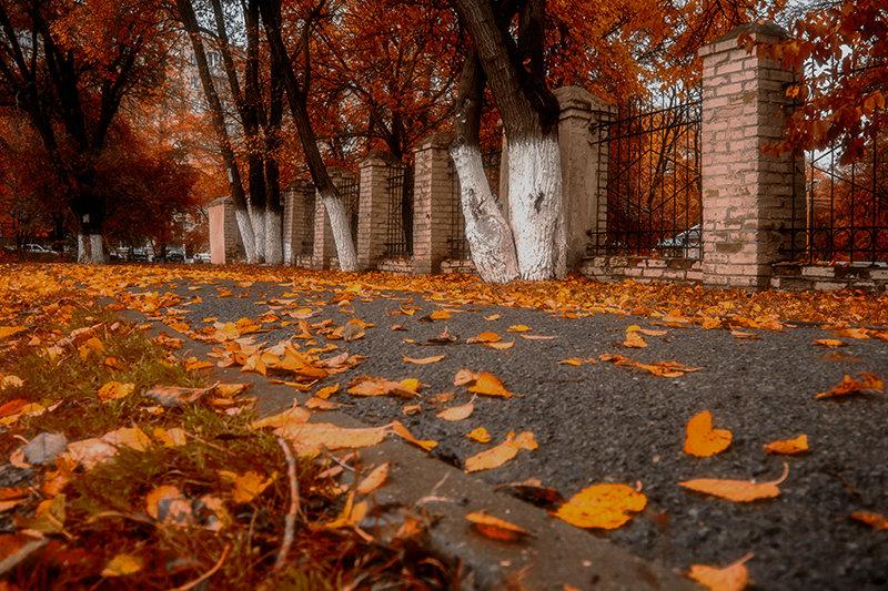Осень - Виталий Павлов