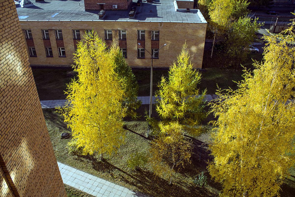 осень из окна - николай дубовцев