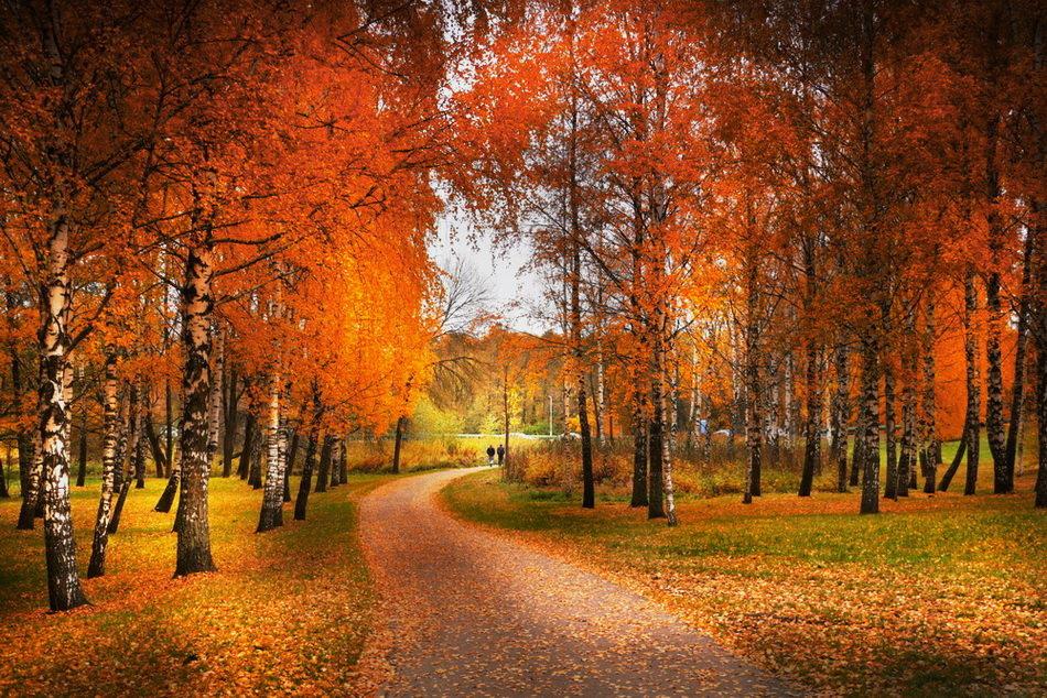 Осень - Валерий Козуб