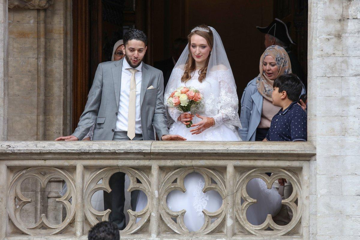 Брюссельская свадьба - Владимир Леликов