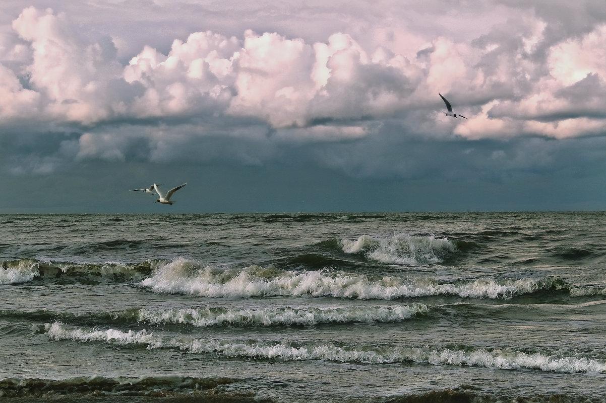А море живет своей жизнью... - Marina Pavlova