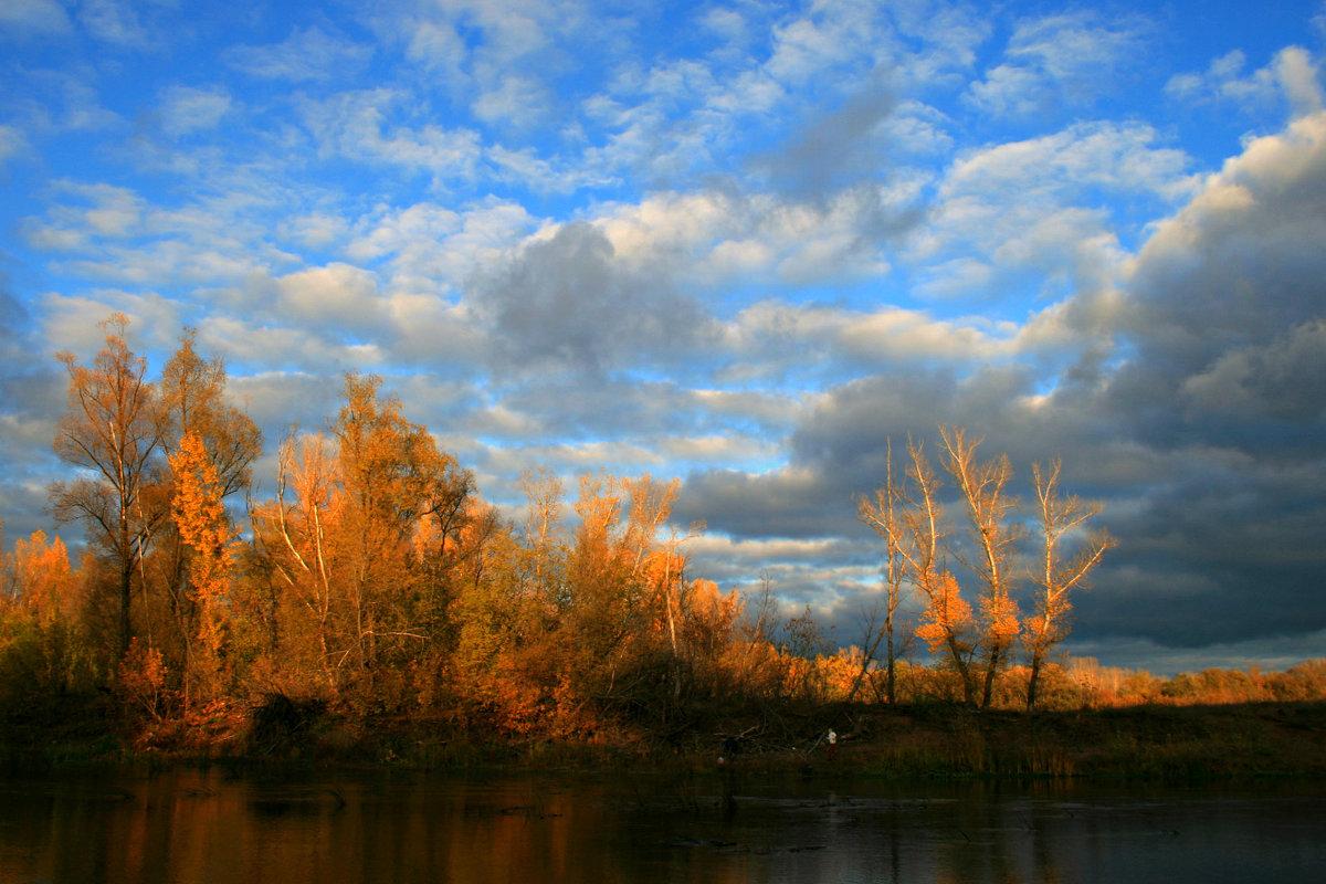 Золотая, золотая, золотая осень ... - Евгений Юрков