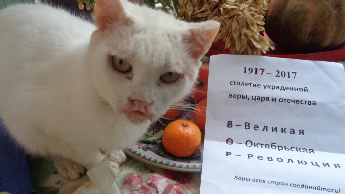 Юбилей оранжевой, пардон, Октябрьской революции!... - Алекс Аро Аро