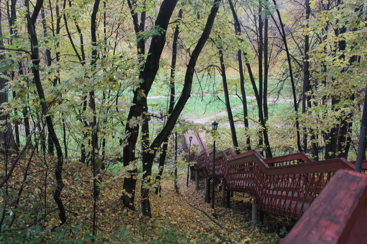 Коломенское осень 2006 - Валерий Скобкарёв