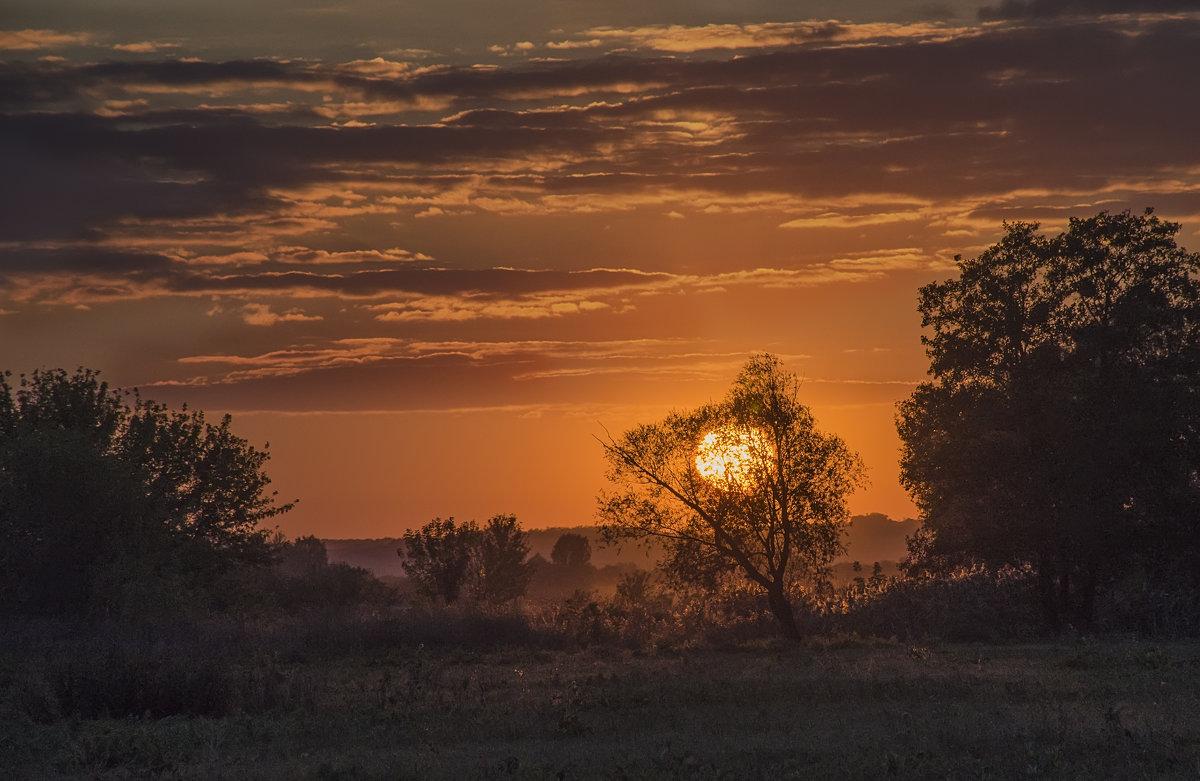 Оранжевое небо-оранжевое соннце-оранжевый закат - Лариса Березуцкая