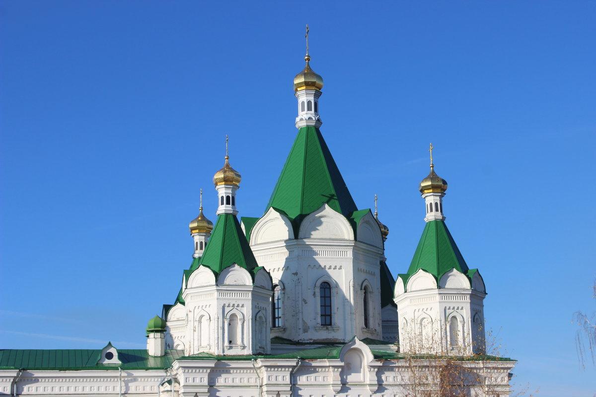 Храм Александра Невского - Дмитрий Солоненко