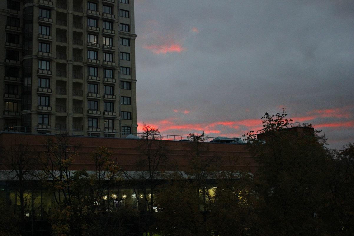 закат в Воронеже - Виктория Бурова