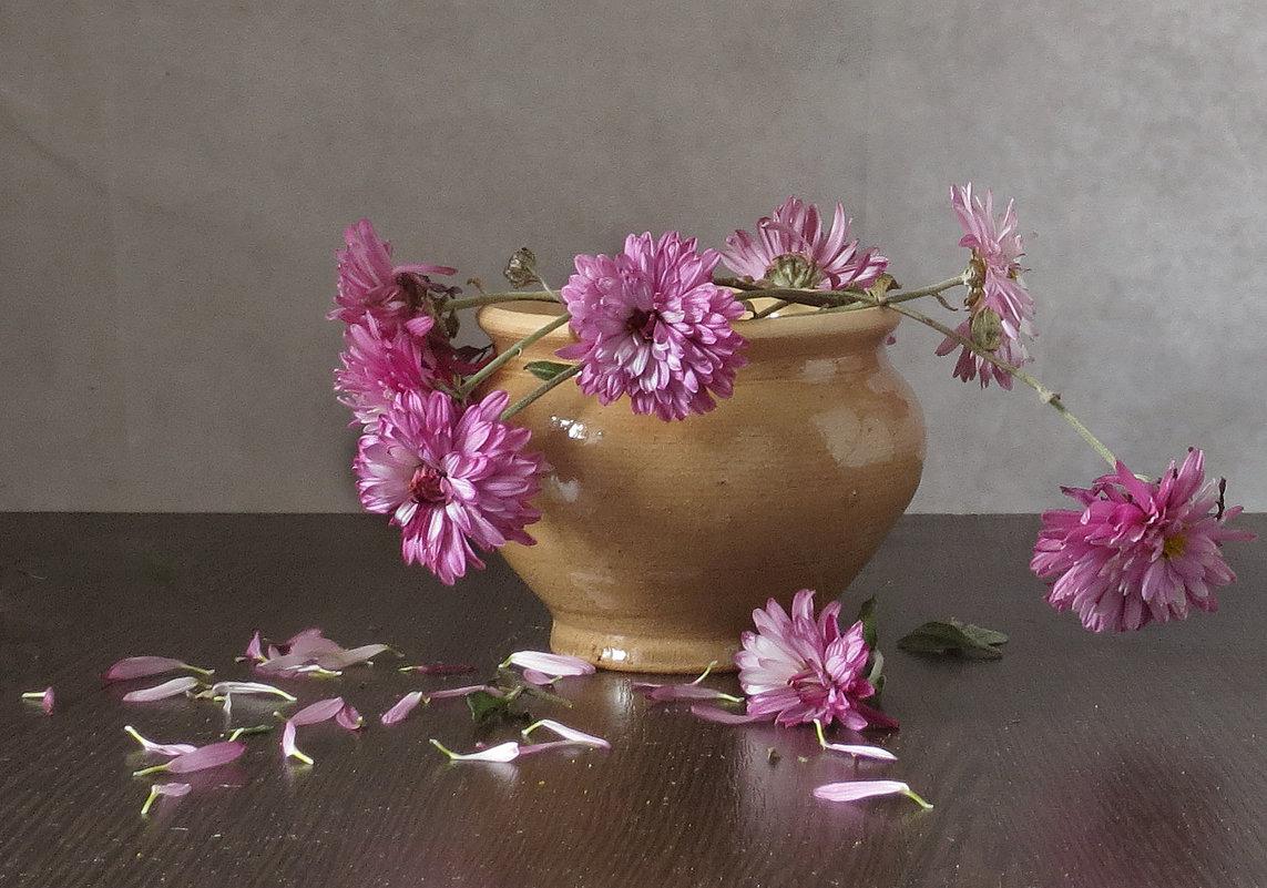 Цветы запоздалые - SaGa
