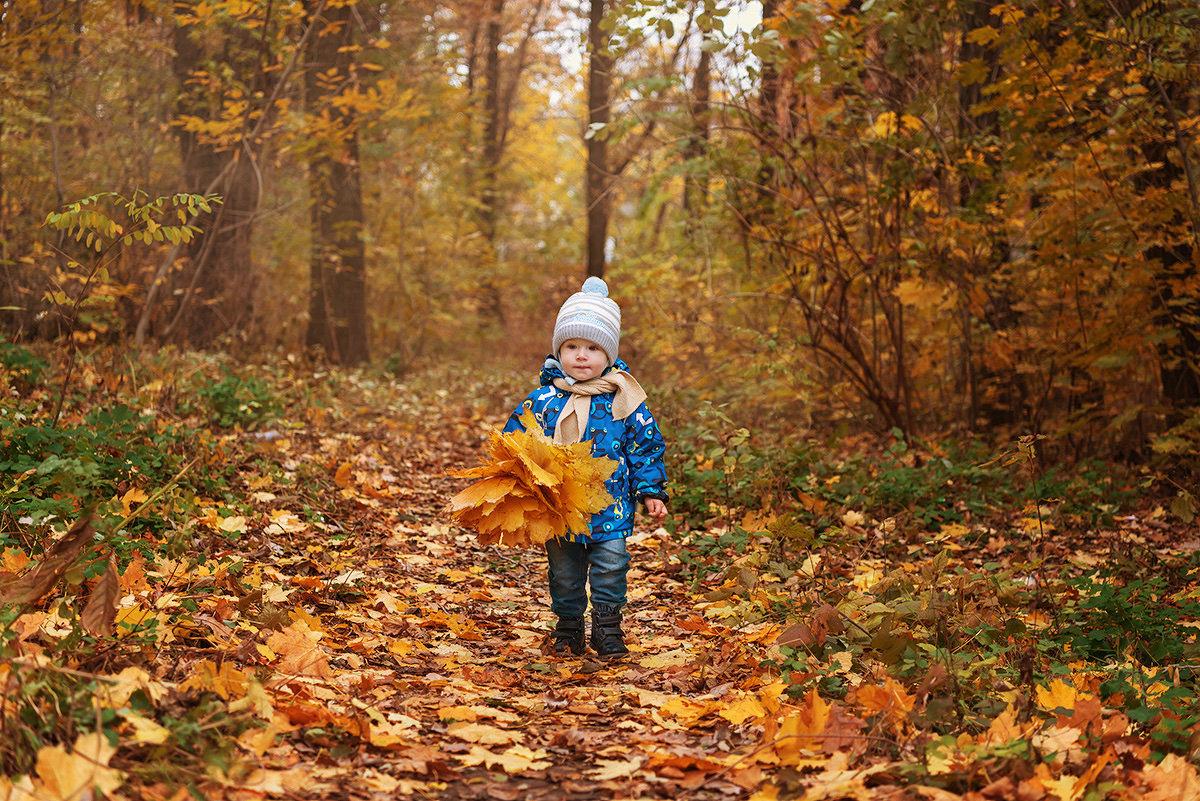 Осенние прогулки - Александр Неверов