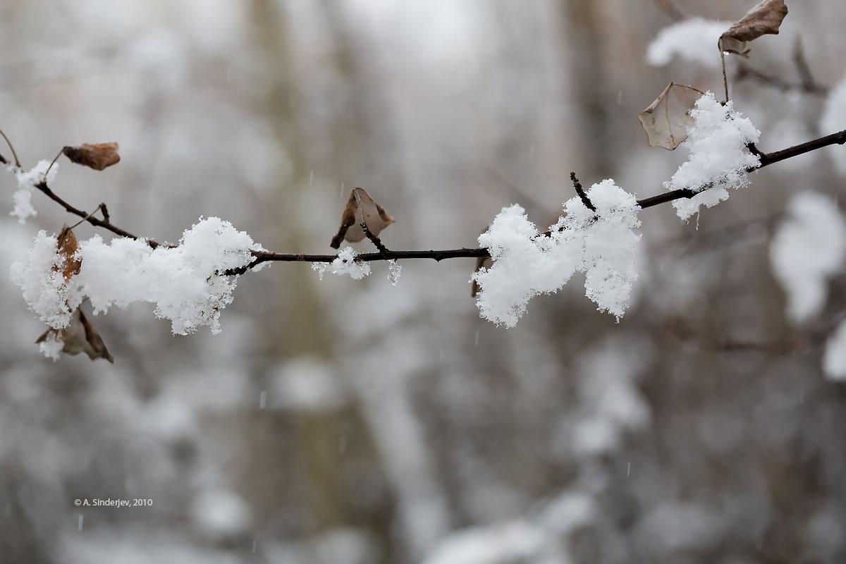 Снег в октябре - Александр Синдерёв