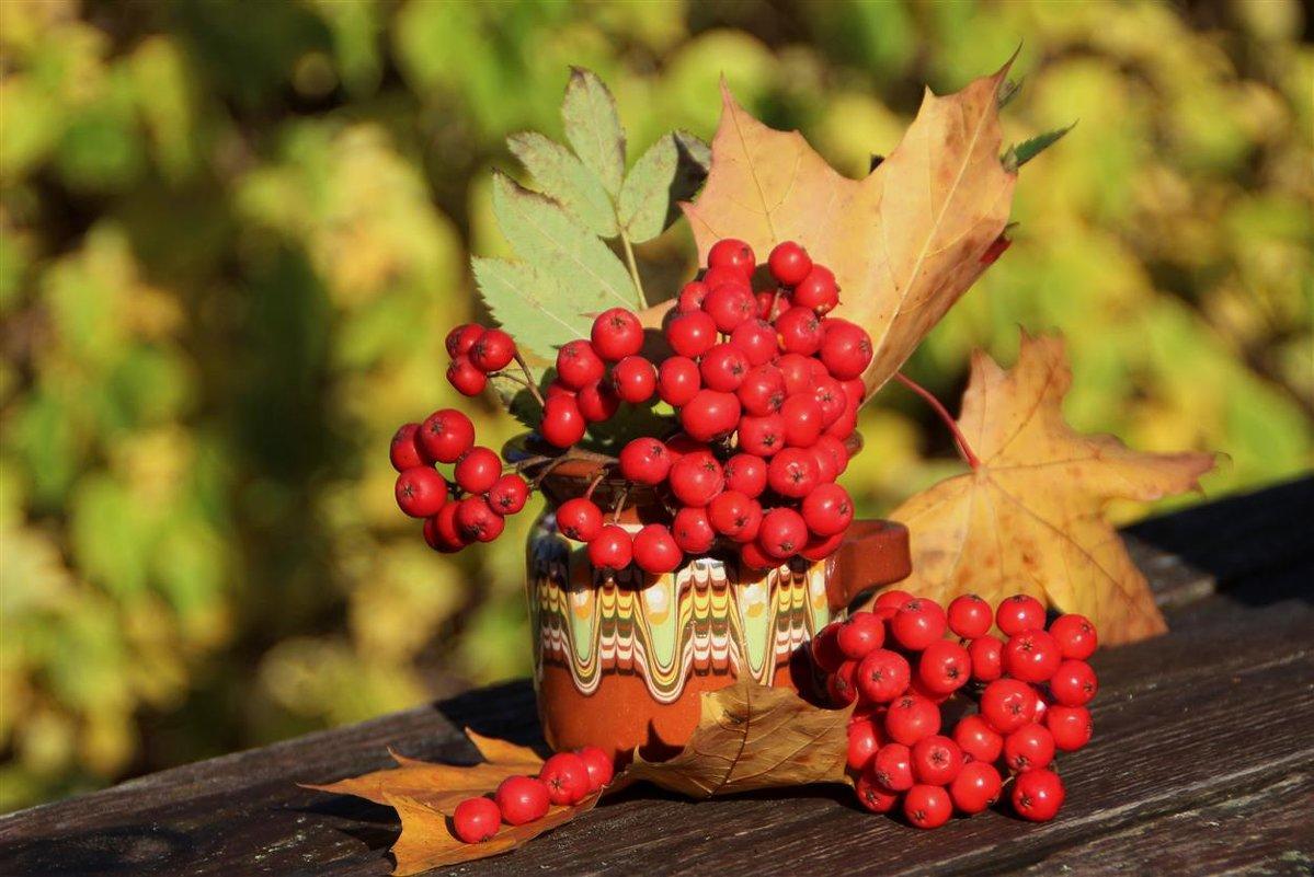 Краски октября - Татьянка *