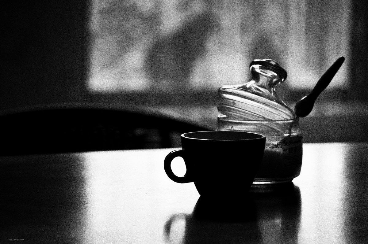 Чашка чая и кошка за окном - Ольга Мальцева