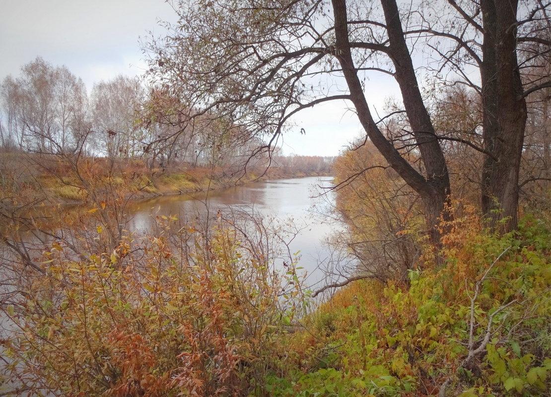 Осень в танце кружилась легко под янтарным дождем листопада... - Елена Ярова