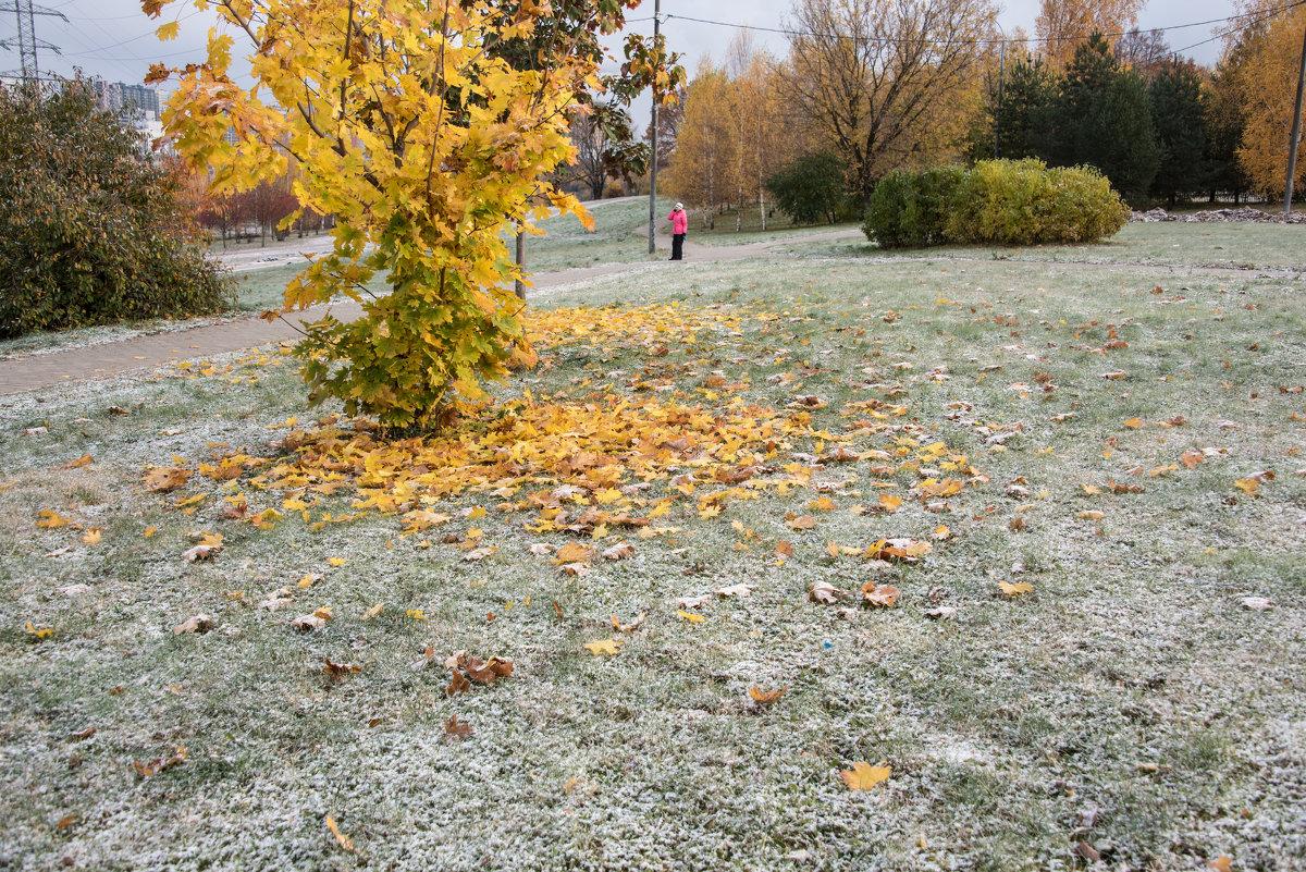 Однако осень и первый снег... - Владимир Безбородов