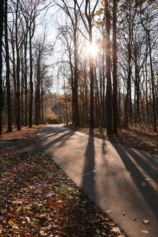 Осень - Юлия Пятова