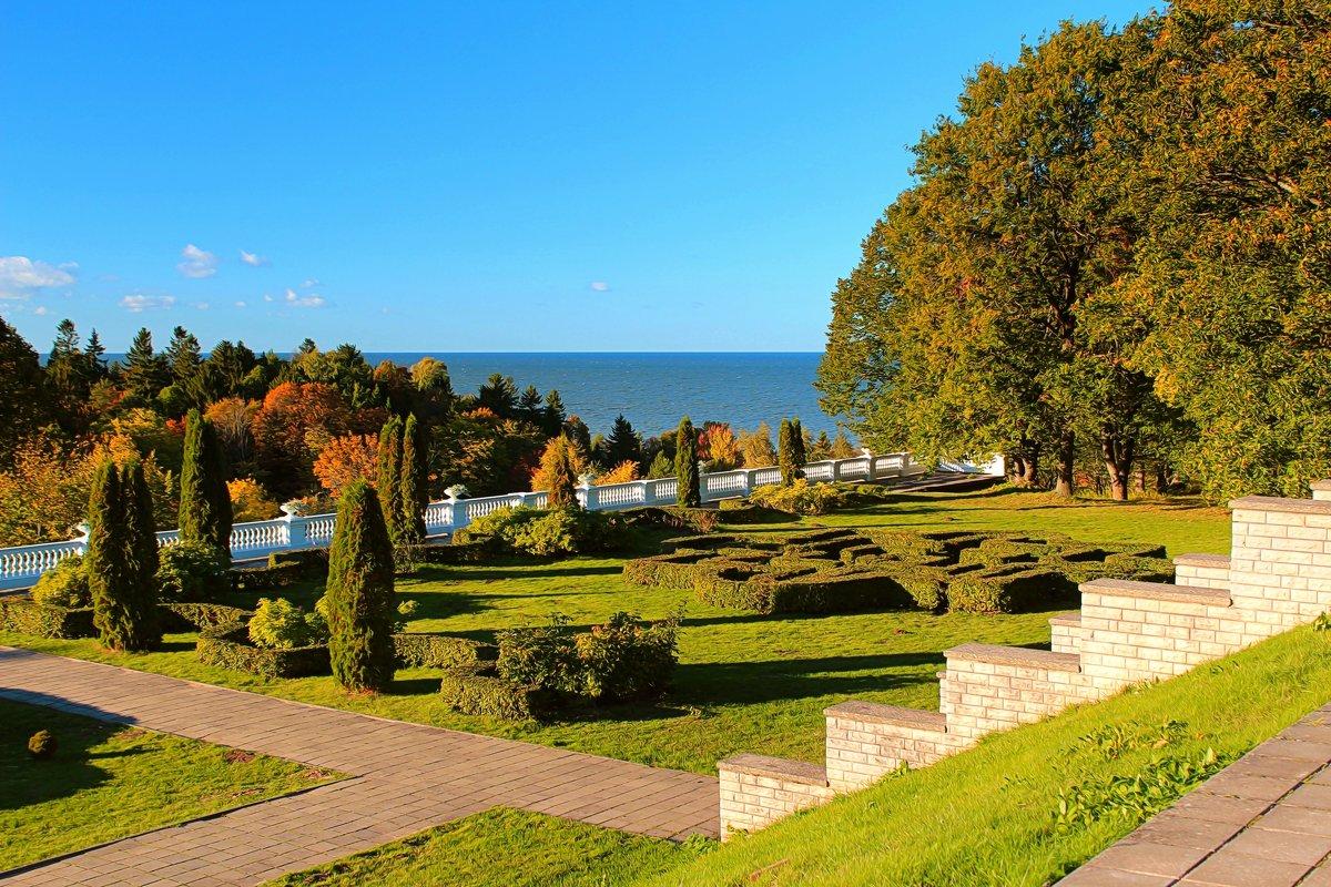 Осень в парке Тойла-Ору - Marina Pavlova