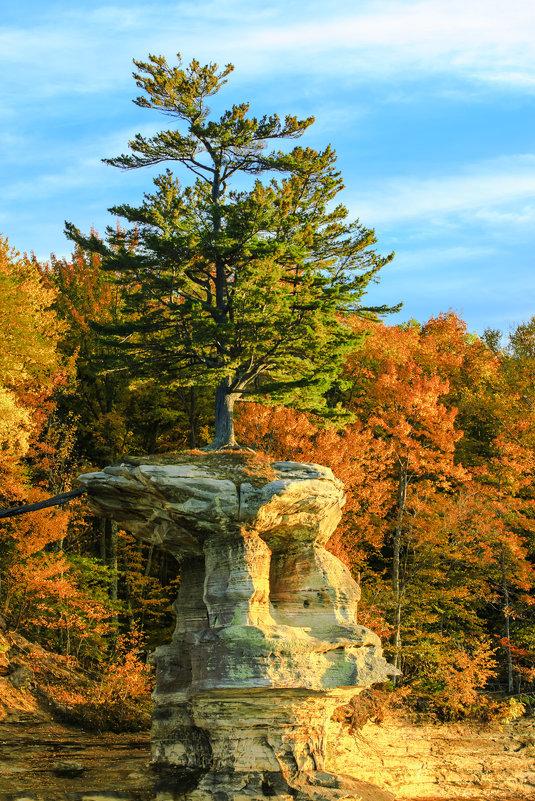 И на скалах растут деревья... - Алена Торопов
