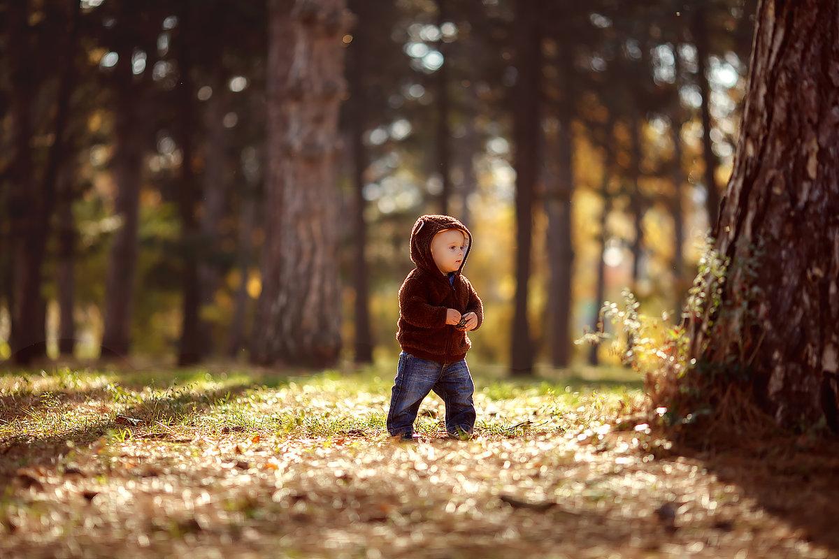 Мишка косолапый по лесу идет... - Irina Kodentseva