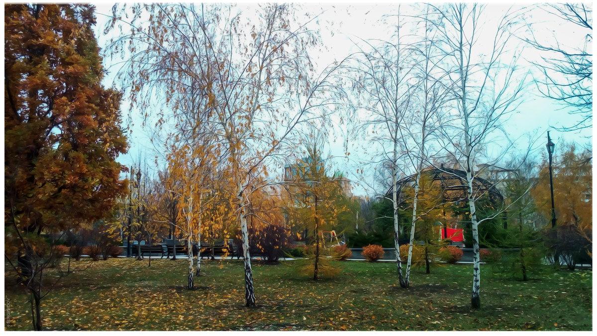 Осенний парк - Sergii VIdov