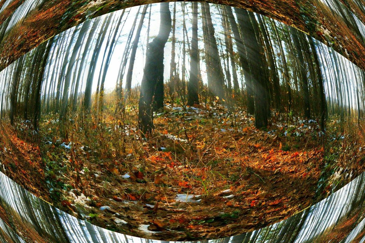 Где-то в ноябре.. - Андрей Заломленков