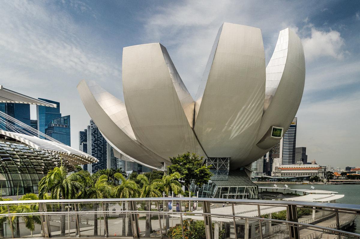 Музей искусства и науки (ArtScience Museum), Сингапур. - Edward J.Berelet