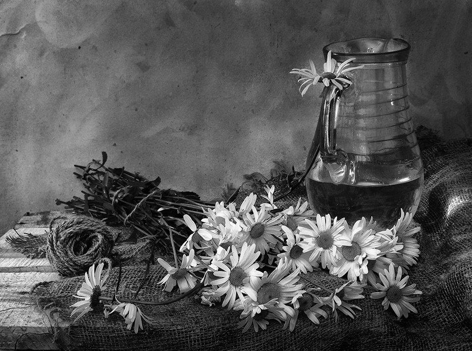 ромашки - Наталья S