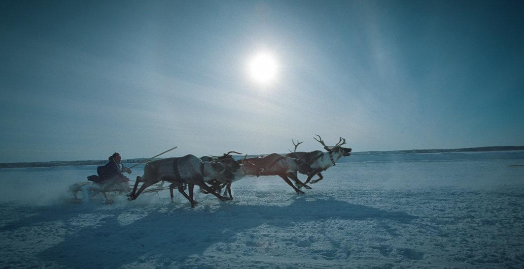 Весёлый бег - Gennadiy Litvinov