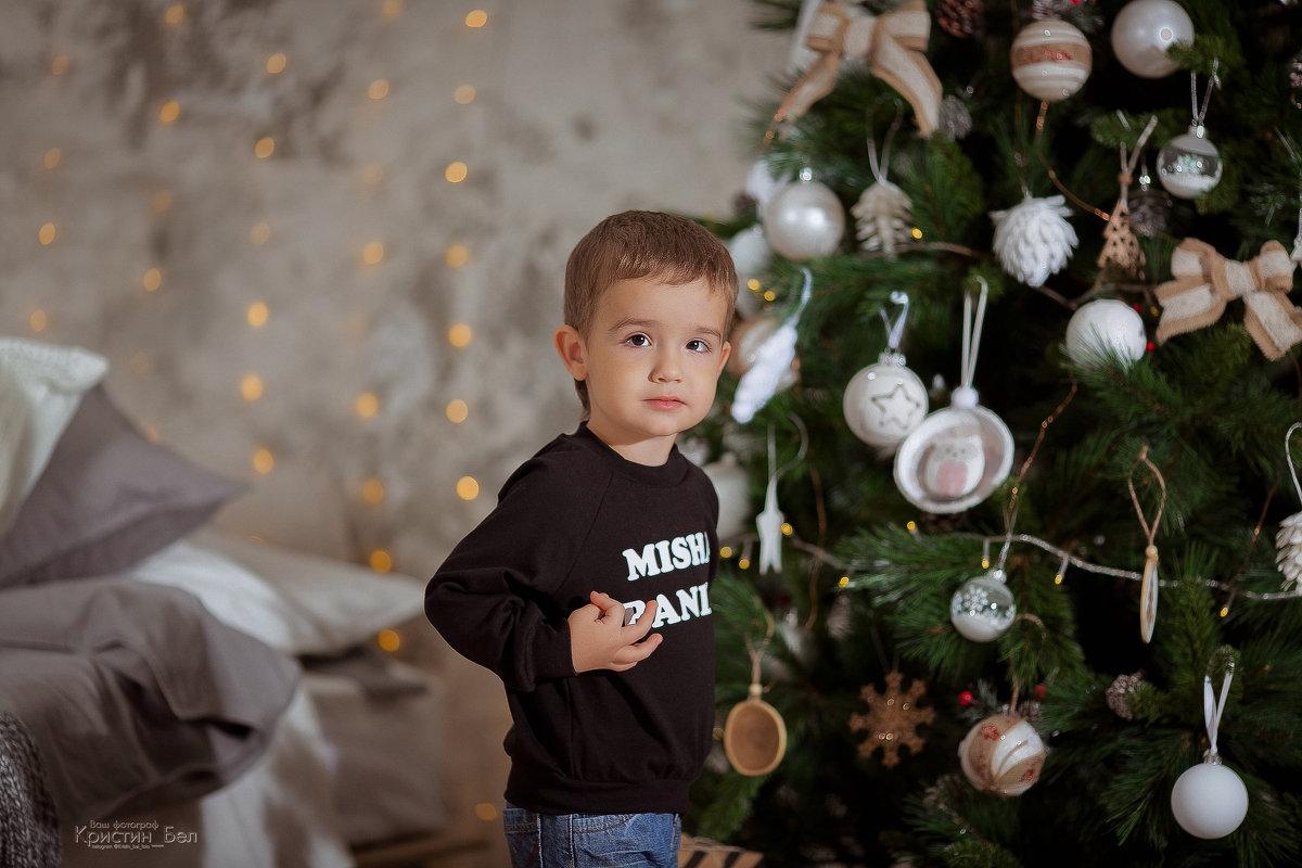 Маленький Мишаня и его новогодняя сказка - Кристина Беляева